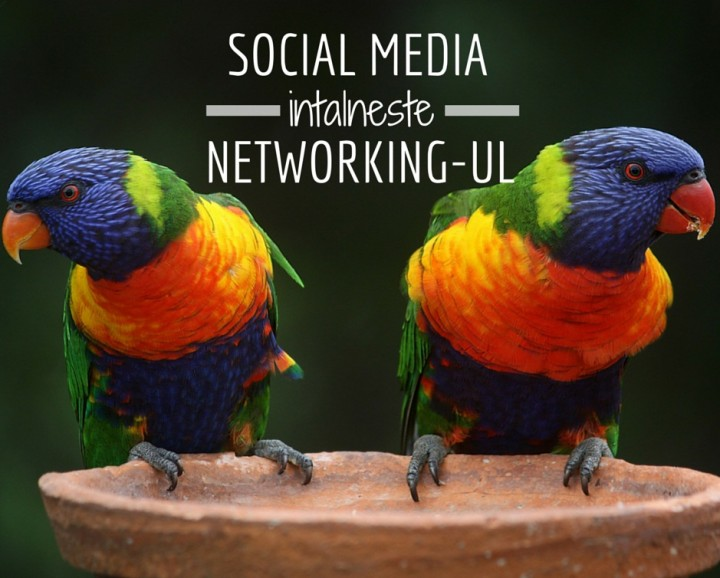 De ce social media si networking-ul sunt cuplul perfect